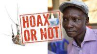 Kentut Sakti Pria Uganda Mampu Bunuh Nyamuk